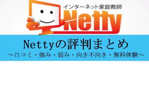 【2021年保存版】Nettyの評判まとめ|強み・向いている人等