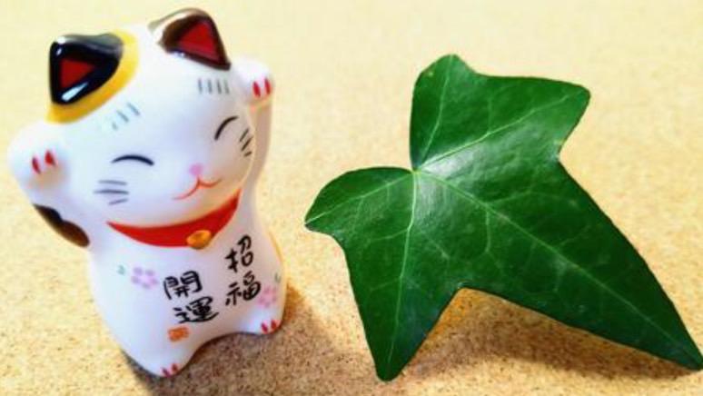 幸せを意味する四字熟語⑦:金運招福(きんうんしょうふく)