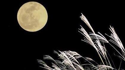 「秋の風景」を表す四字熟語①:中秋名月(ちゅうしゅうのめいげつ)